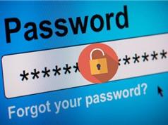 Người dùng Việt cần đổi gấp mật khẩu tài khoản trên mạng