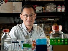 Tế bào gốc đa tiềm năng cảm ứng: Góp phần làm thay đổi thế giới
