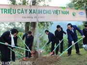 Triển khai Quỹ 1 triệu cây xanh tại Cao Bằng