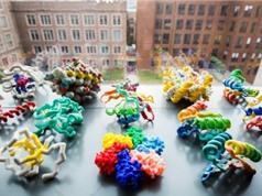 Protein nhân tạo: Niềm hi vọng ngăn ngừa các đại dịch toàn cầu
