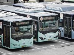 """Thâm Quyến đã """"điện hóa"""" toàn bộ xe bus công cộng"""