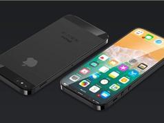iPhone SE 2 diện mạo mới có thể ra mắt hai tháng nữa