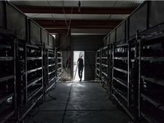 Dân đào bitcoin tháo chạy khỏi Trung Quốc