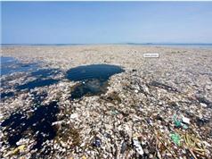 Tổng thể tích nước biển không có ô xy đã tăng 4 lần