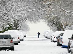 Nhiều nơi ở Mỹ đang lạnh nhất hành tinh, nhiệt độ xuống âm 73 độ C