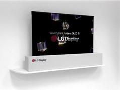 LG công bố TV  65 inch siêu mỏng, có thể cuộn như giấy