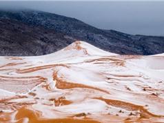 Sa mạc Sahara lại có tuyết rơi