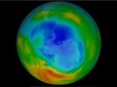 Lỗ thủng tầng ozone đang thu hẹp nhờ lệnh cấm sử dụng CFC