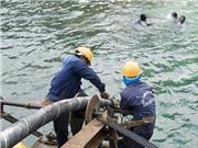 20/1: Cáp quang biển AAG sẽ khôi phục 100% dung lượng