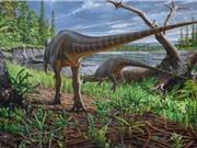 Phát hiện loài khủng long nhỏ bằng gà tây ở Australia