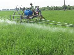 Sau robot gieo hạt, Phạm Văn Hát sáng chế máy phun thuốc trừ sâu