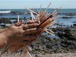Ống hút nhựa sẽ sớm bị tuyệt chủng trên thế giới?