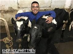Việt Nam chủ động sản xuất bò BBB