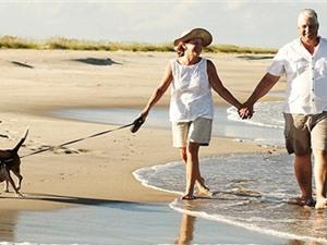 Nghỉ hưu làm suy giảm chức năng não nhanh chóng