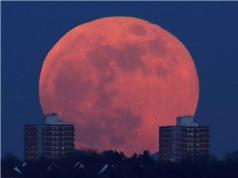 Những hình ảnh độc đáo trên toàn thế giới khi xuất hiện siêu trăng, trăng xanh, trăng máu