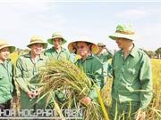 Chủ tịch HĐQT ThaiBinh Seed Trần Mạnh Báo: Vị doanh nhân mê tạo giống lúa