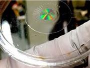 Thấu kính kim loại khắc phục khiếm khuyết thị giác