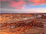 Phát hiện sự sống trên sa mạc có điều kiện tương tự trên Sao Hỏa