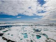 Bắc Cực ấm hơn châu Âu một cách bất thường