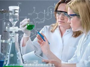 Những thiên kiến về phụ nữ nghiên cứu khoa học từ góc nhìn của Giám đốc Quỹ Kovalevskaia
