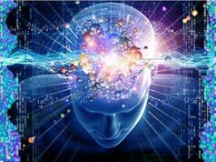 Nghiên cứu cuộc sống bất tử qua trí tuệ nhân tạo