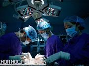 Ghép tạng nhân thêm sự sống: Kỹ thuật đã làm chủ, vẫn còn vướng chính sách