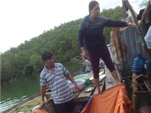Triển vọng mô hình nuôi cá chẽm ở lòng hồ thủy điện sông Hinh