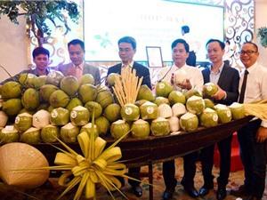Bến Tre dùng công nghệ để nâng cao giá trị cây dừa