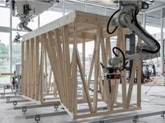 Robot lắp ráp kết cấu khung nhà không cần đến giàn giáo