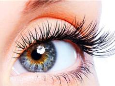 Công nghệ tế bào gốc có thể chữa khỏi mù lòa do thoái hóa điểm vàng