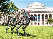 Boston, một trung tâm sáng tạo mới của Hoa Kỳ