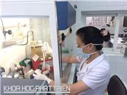 Bộ kit nhuộm hóa học: Chẩn đoán chính xác 85% bệnh bạch cầu cấp