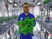 Thu hoạch rau sống tại Nam Cực