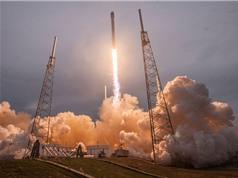 NASA đưa tinh trùng lên trạm không gian ISS  để nghiên cứu