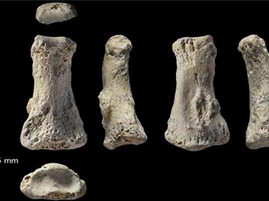Hóa thạch xương người hiện đại lâu đời nhất ngoài châu Phi