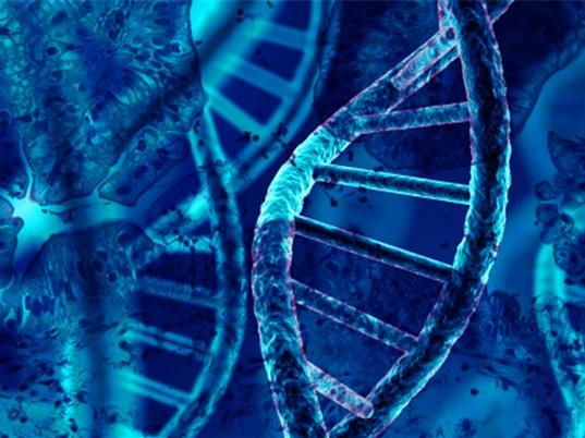 Kỹ thuật CRISPR không tế bào giúp cá nhân hóa việc điều trị ung thư