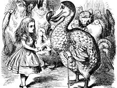 """Bí ẩn cái chết của con chim Dodo quý hiếm trong """"Alice ở xứ sở thần tiên"""""""