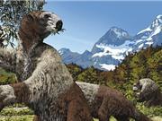 Con người đã săn loài lười khổng lồ suốt Kỉ Băng hà