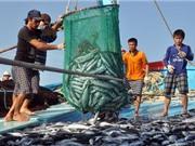Đào tạo nghề cho ngư dân theo hướng sử dụng công nghệ cao