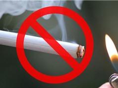 Mỹ có kế hoạch làm giảm lượng nicotin trong thuốc lá