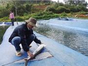 Kon Tum: Khuyến khích DN đầu tư vào 'tam nông'