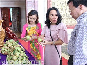 Bắc Giang: 4 nhãn hiệu nông sản được bảo hộ ở nước ngoài