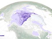 Băng lâu năm ở Bắc Cực đang biến mất