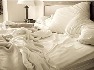 Giường ngủ của người liệu có sạch hơn tổ tinh tinh?