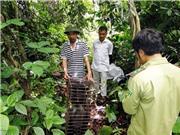Việt Nam hưởng ứng Ngày quốc tế Đa đạng sinh học