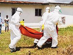 Dịch Ebola có nguy cơ bùng phát tại châu Phi
