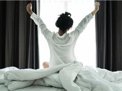 Có thể bù đắp thiếu ngủ bằng ngủ nướng?