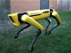 [Video] Robot chó biết tuần tra và giúp việc nhà sắp có mặt trên thị trường