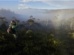 Hạn chế nhà khoa học nước ngoài gây bất lợi cho Indonesia?