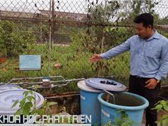 Cần Thơ: Nghiên cứu, chế tạo  thành công hệ thống xử lý nước nhiễm phèn
